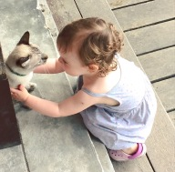 Maddy making friends with a cat at 4 Monkeys June 16
