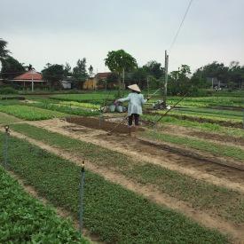 thanh-ha-farming-village-hoi-an-vietnam